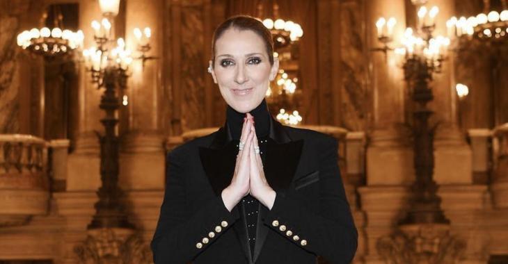 Une photo de Céline Dion dans une tenue très osée provoque plusieurs réactions