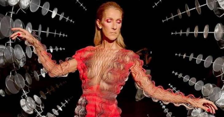 Céline Dion dévoile presque tout dans une robe transparente qui ne fait pas l'unanimité