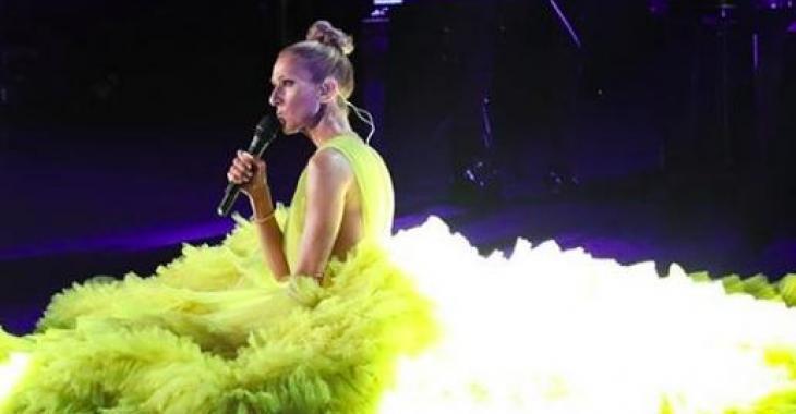 Céline Dion était en spectacle à Londres et ses looks ont complètement volé l'attention