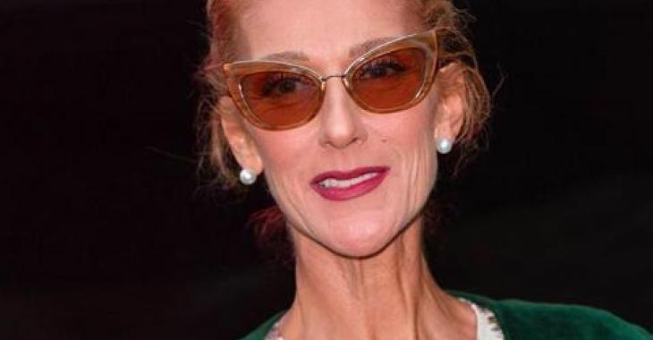 Céline Dion fait tourner toutes les têtes sur Instagram avec son nouveau look flamboyant