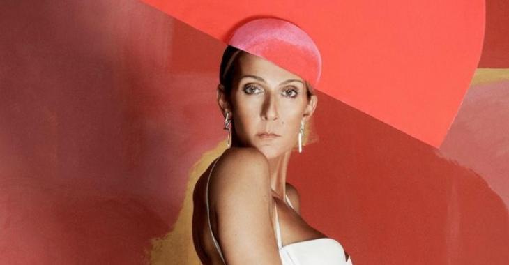 Une photo de Céline Dion dans une nouvelle tenue excentrique fait un malheur