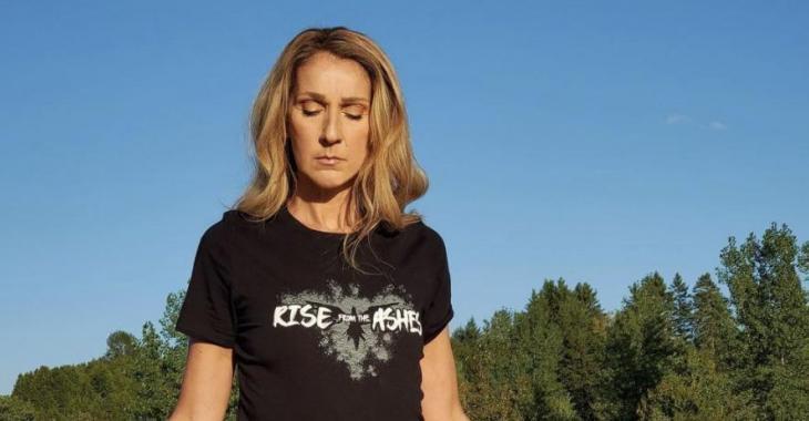 Céline Dion sort publiquement et avoue avoir été victime de gestes déplacés